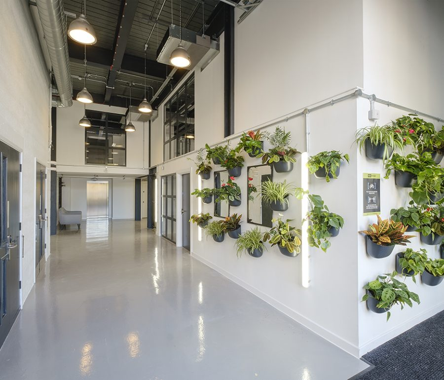 HERE INTRODUCES NEW PLANT WALLS